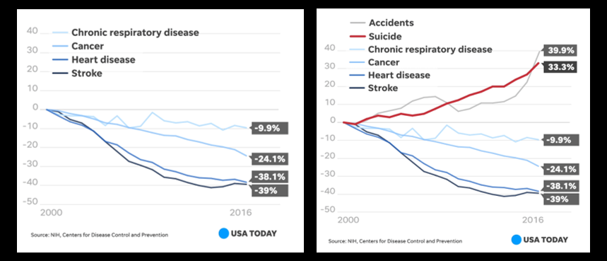 """NEWS & COMMENTARY:   ALL of """"leading causes of death"""" in the US have declined since 1999 except two — suicide & accidents"""